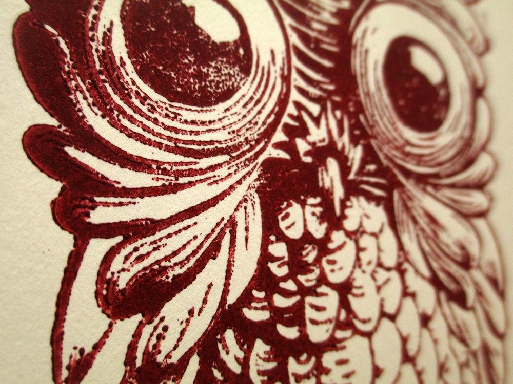 Owl_close.jpg