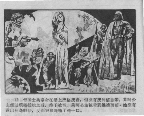 Chinese Princess Leia (蕾亚公主)