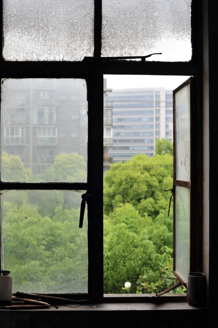 Looking out the window of an old compound.  看着老大杂院的窗户外面。