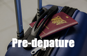 suitcase-passport.jpg