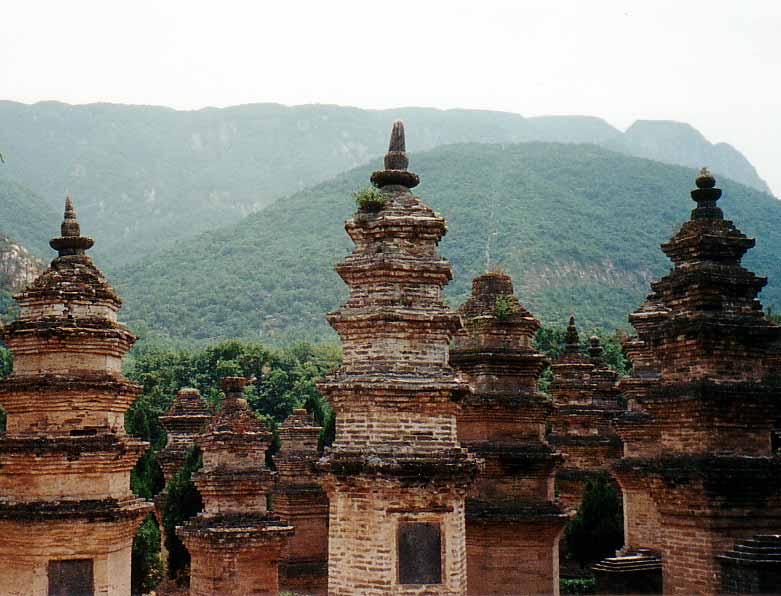Pagoda Forest at the Shaolin monastery on Sōng Shān 嵩山 (Wikimedia Commons)