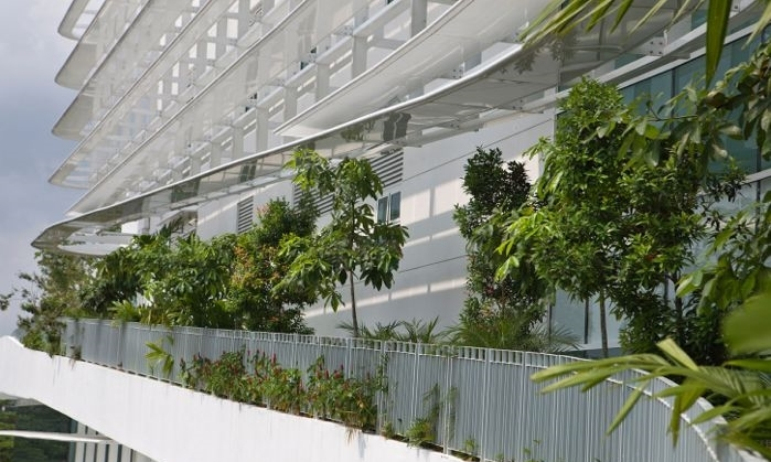 Solaris - greenroofs.com - Albert Lim 3.jpg