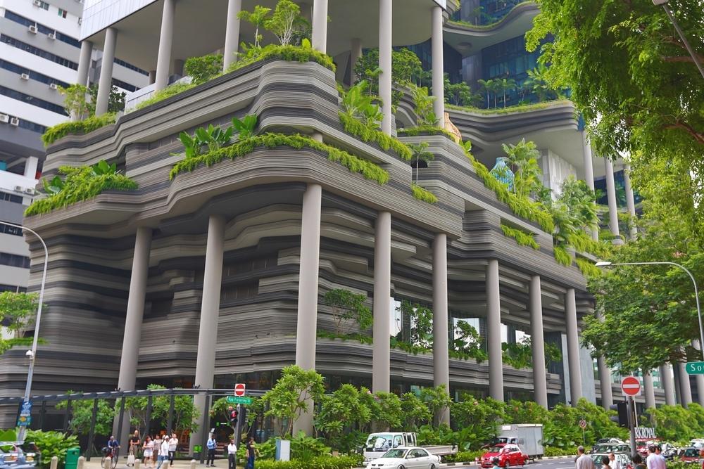 urban greenery