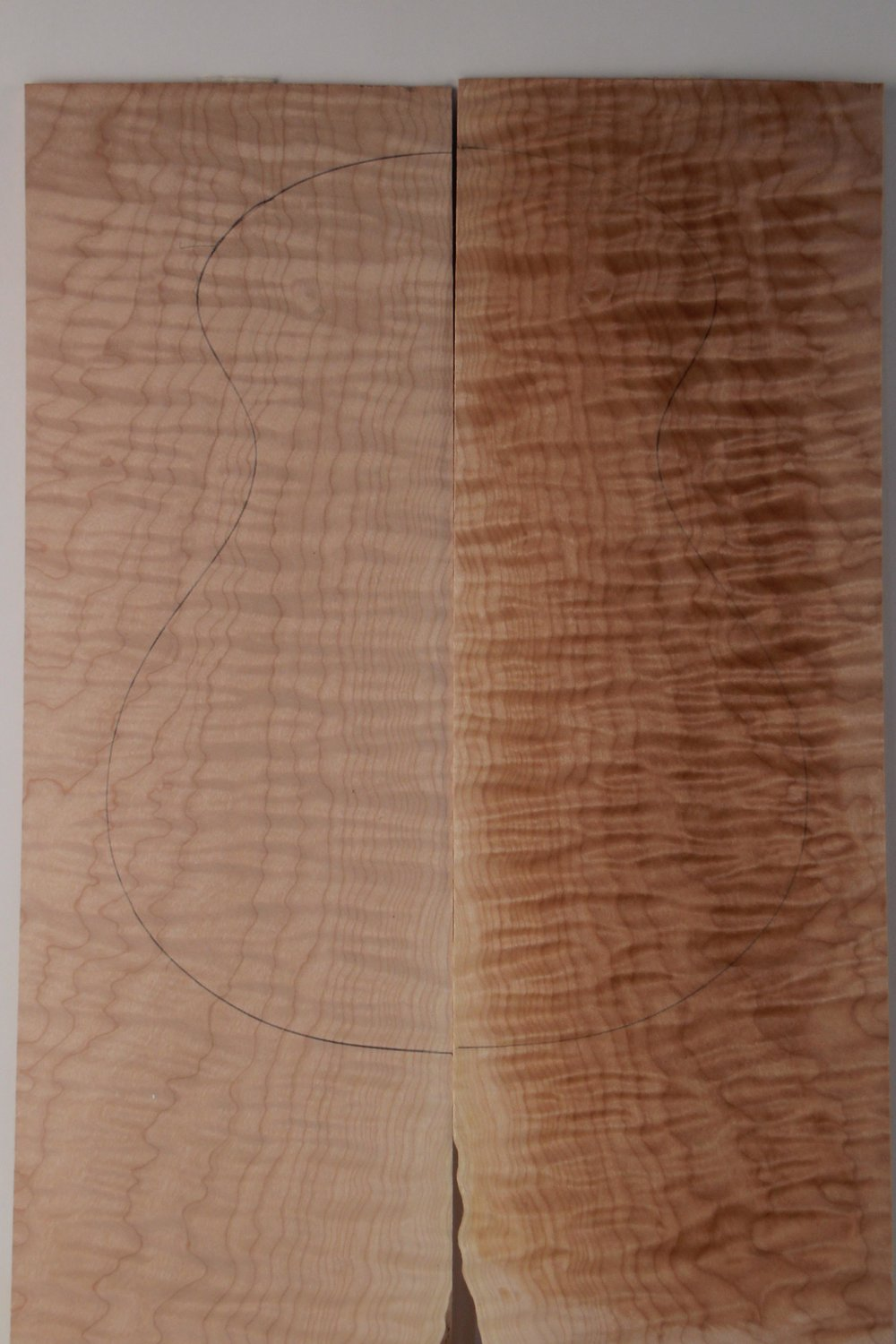 Curly Maple 2