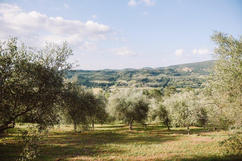 landvphotography_wedding_photographer_tuscany_0008.jpg