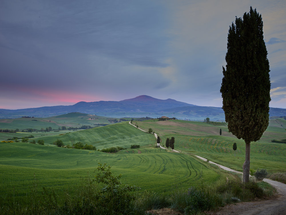 Tuscany_17-05-03_104.jpg