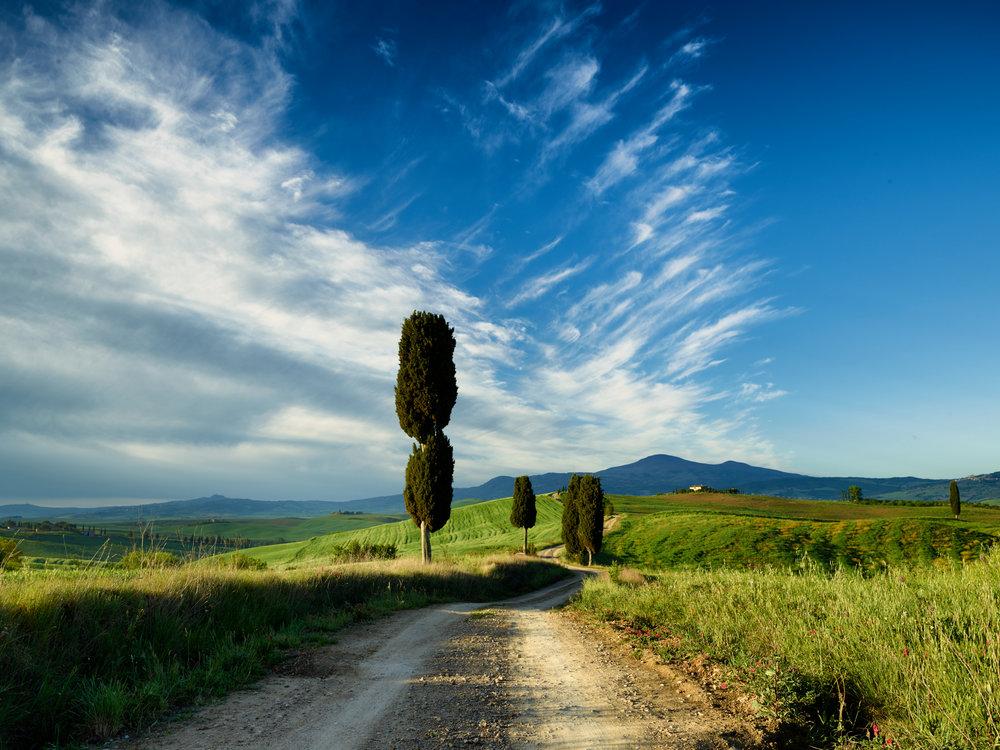 Tuscany_17-05-03_146.jpg