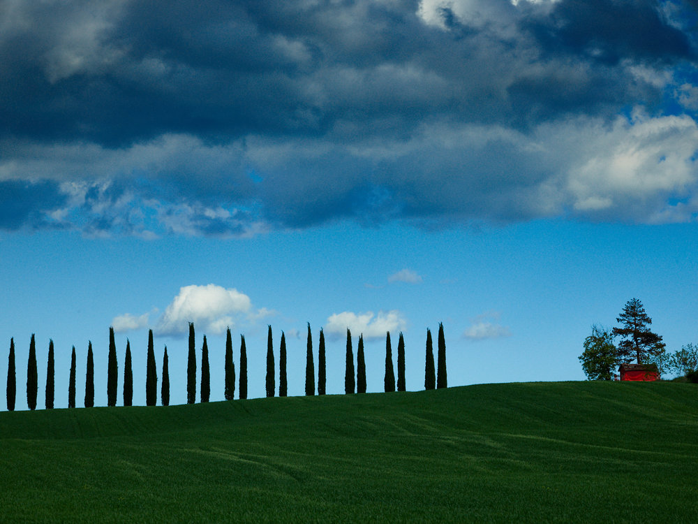 Tuscany_17-05-04_331.jpg