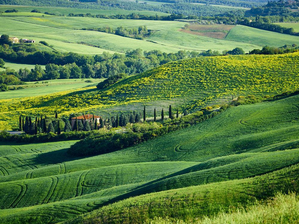 Tuscany_17-05-05_532.jpg