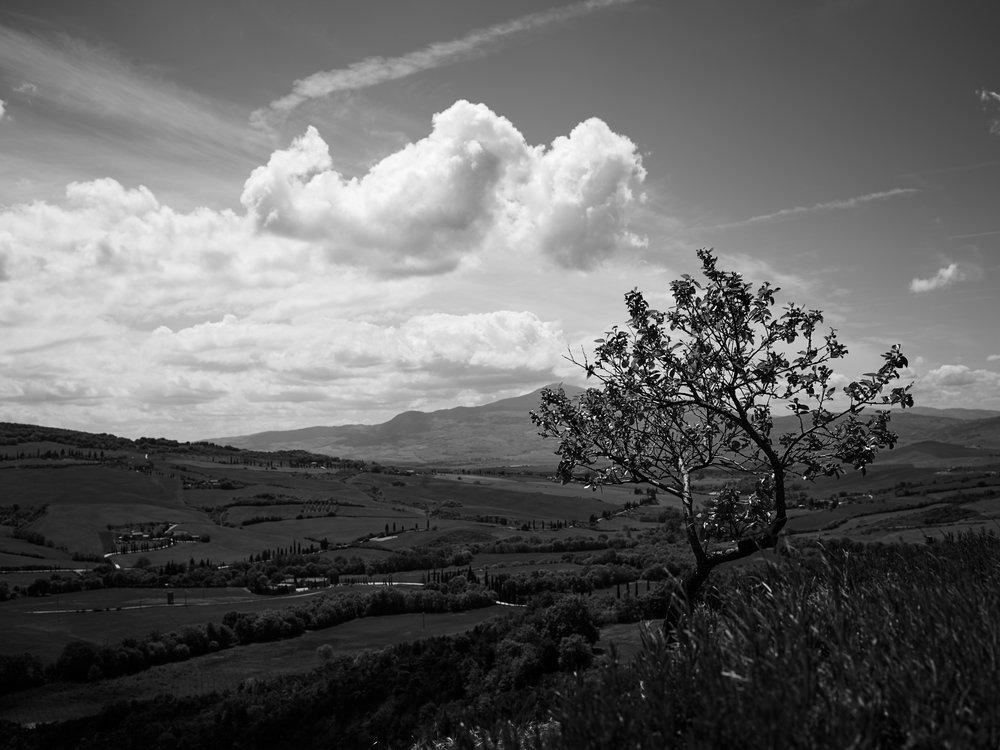 Tuscany_17-05-02_56.jpg