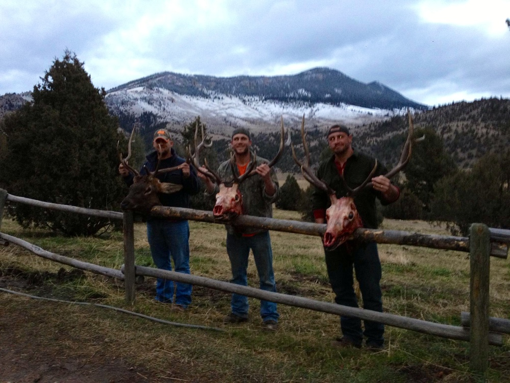 Ryan, Rob, and Jon with their elk in Montana