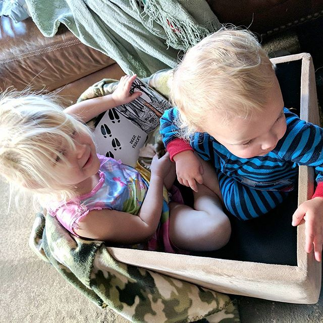While Daddy and big bro are out in the woods today kicking out spots for #firstdayofbuck tomorrow, our two smallest ones made themselves a nice little hunting hole out of our ottoman and they're  cozied up with #myfirstbowhuntingbook which is still on special (2 books for $12!) at our website until tomorrow night! #linkinprofile #huntingfamily #fishingfamily #littleoutdoorsman #camokids