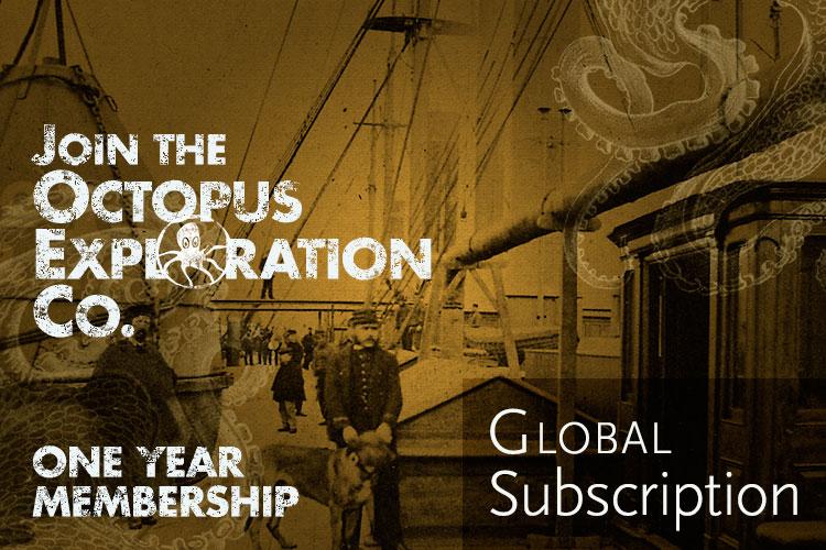 One-Year-Global-Cover.jpg