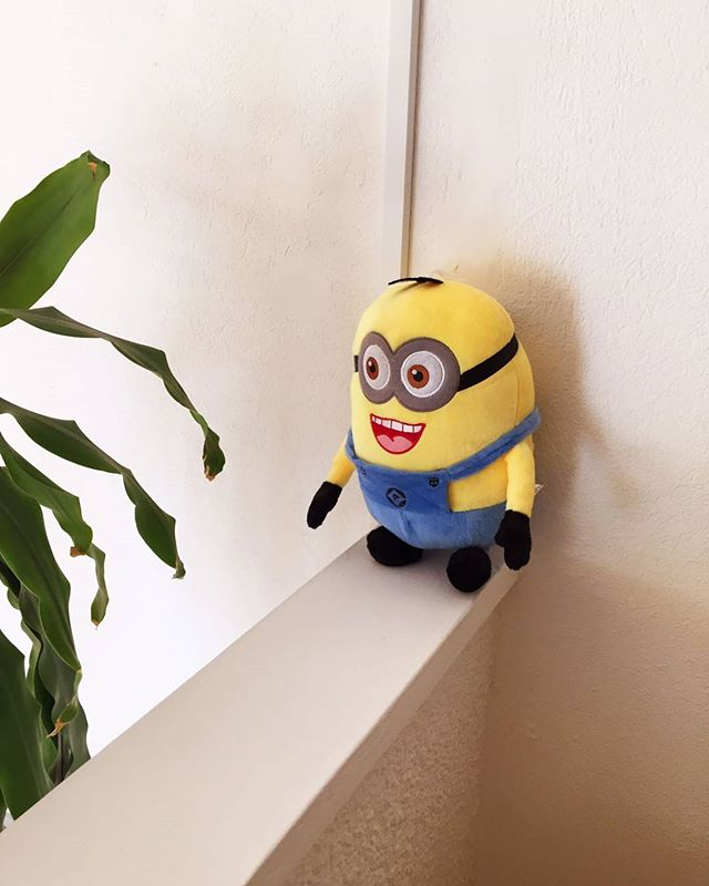 Ok, now it's starting to feel like some devious plan. They are everywhere! 😆 #LifeAtKatalyst #DigitalAgency #Barbados #Caribbean #GetShitDone #Minions #Invasion