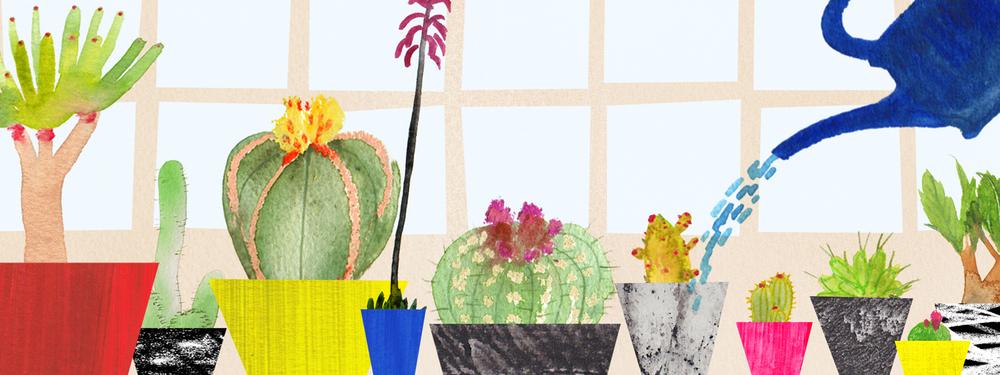 SundayTimes_Cactus.jpg