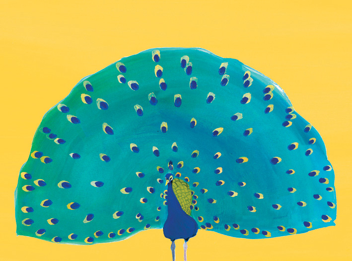Peacock_image.jpg