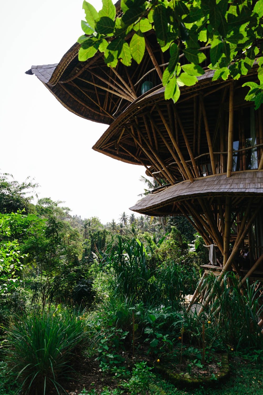 Green Village in Ubud, made entirely of bamboo