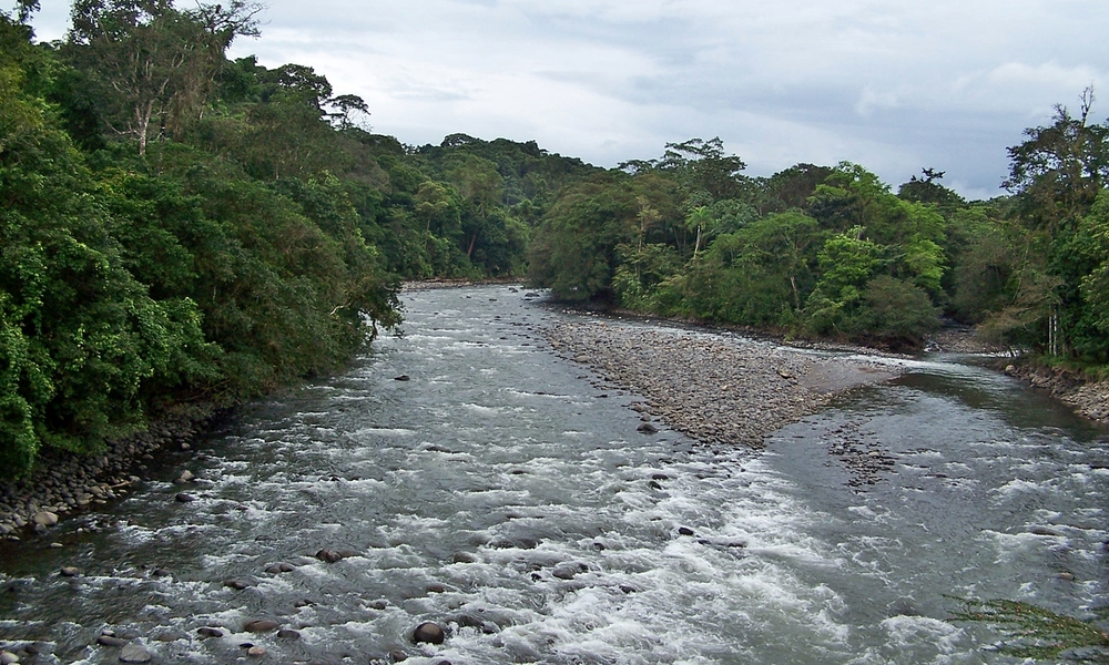Sarapiqui.River.JPG