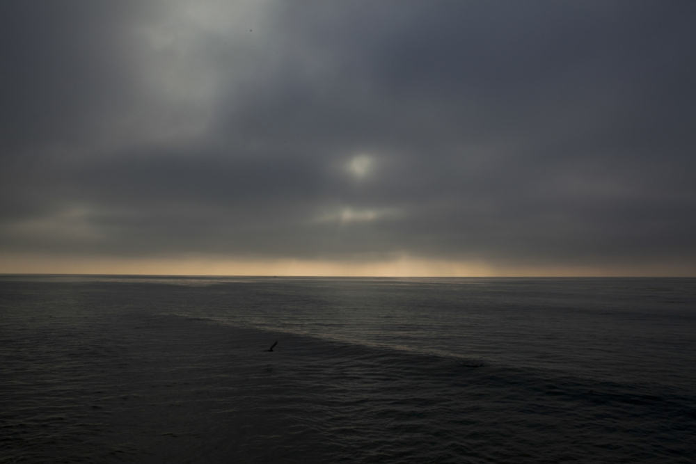 """Malibu Ocean"" 2012"