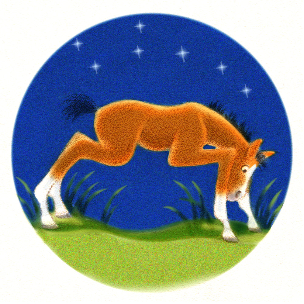 DaraGoldman.foalstanding.jpg