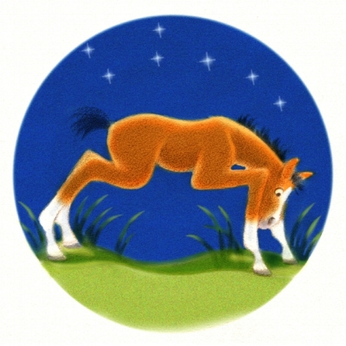 foalstanding.jpg