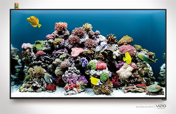 Fish Tank - Print
