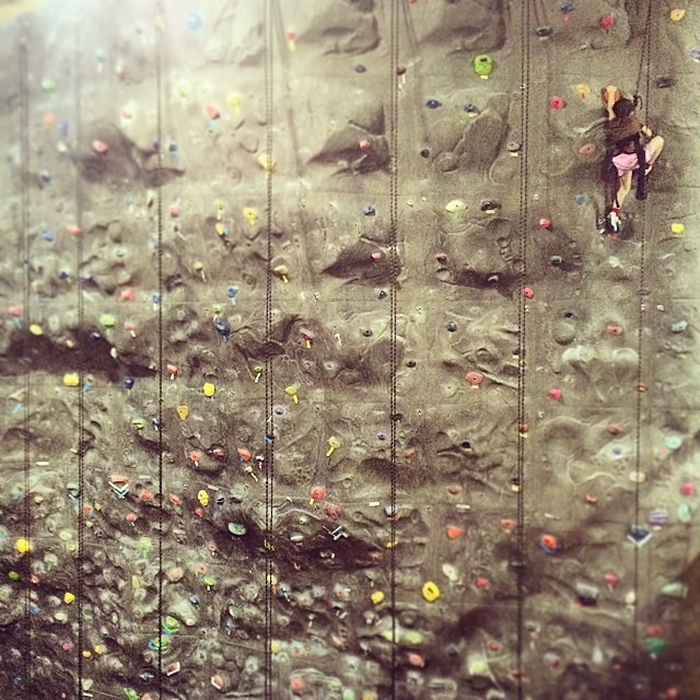 Karlee, 5-years old climbing at 30 feet.