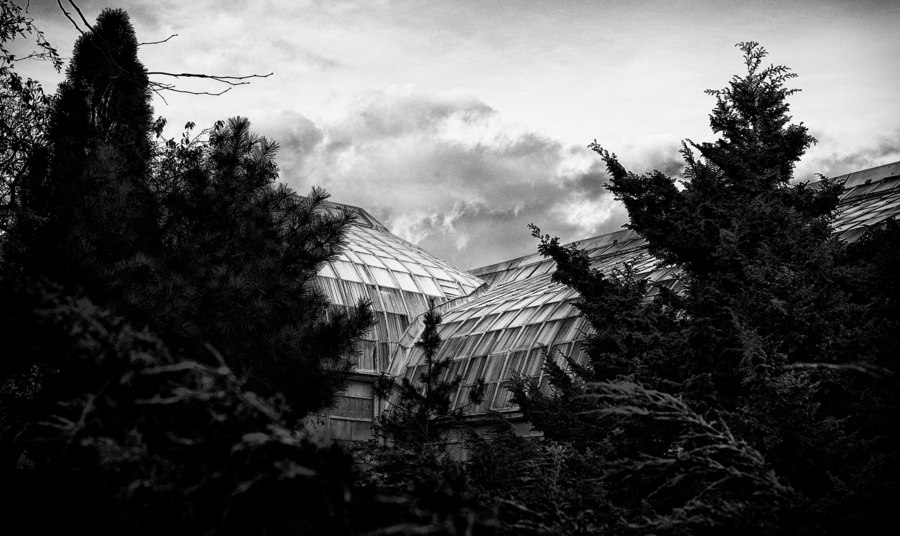 Lincoln Park Conservatory -   http://bit.ly/XeqXfD