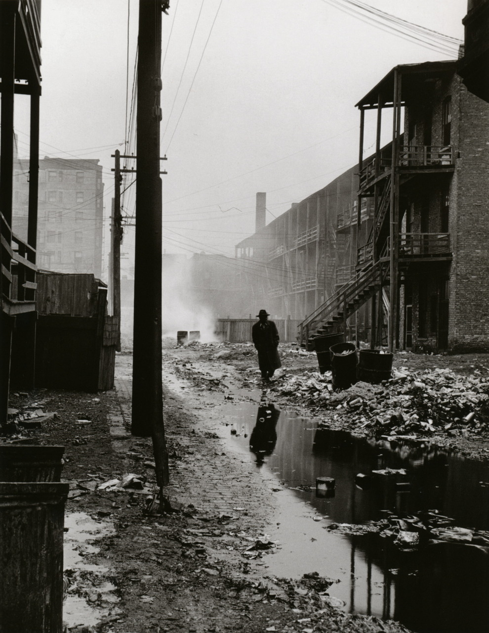 "liquidnight :      Wayne F. Miller    An alley between overcrowded tenements, with garbage thrown over the railings of the back porches. Most of the area's tenants were transient.   Midwest, 1946-1949  ""The Way of Life of the Northern Negro""  Published in  Ebony , December 1951   From  Wayne F. Miller: Photographs 1942-1958      Amazing shot."