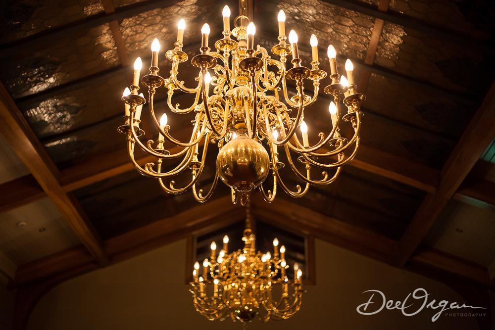 Dee Organ Photography-001-6373.jpg
