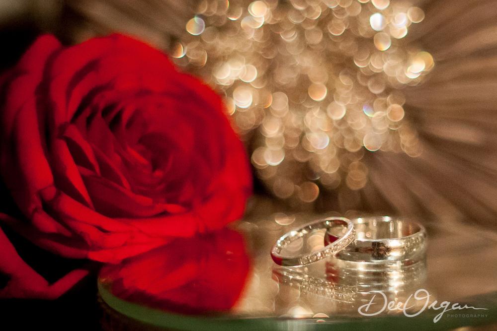 Dee Organ Photography-223-6873.jpg