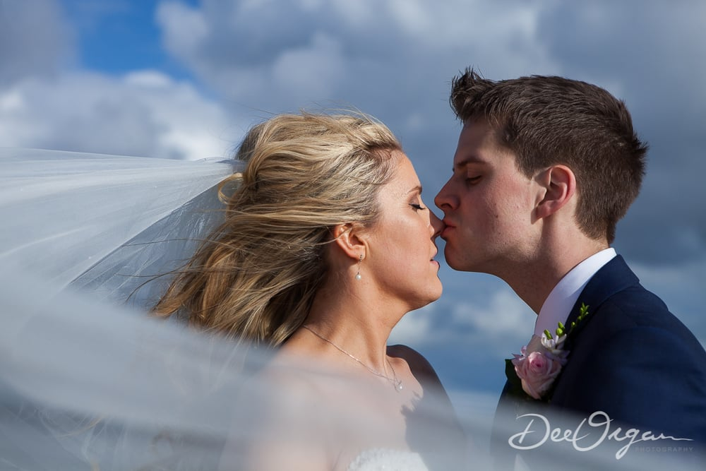 Dee Organ Photography-555-9811.jpg