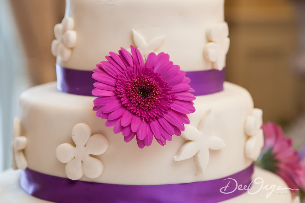 Dee Organ Photography-581-9907.jpg