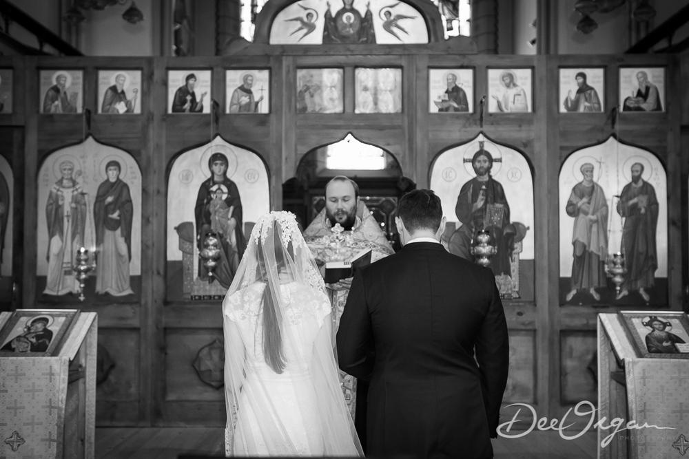 Dee Organ Photography-013-1158.jpg