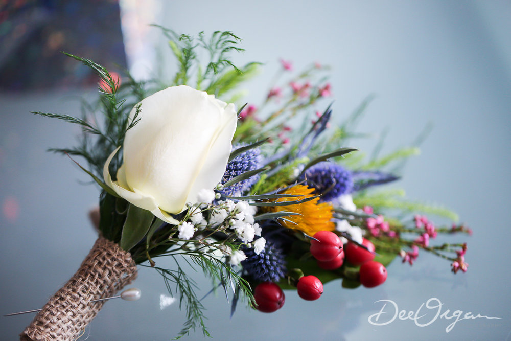 Dee Organ Photography-001-6503.jpg