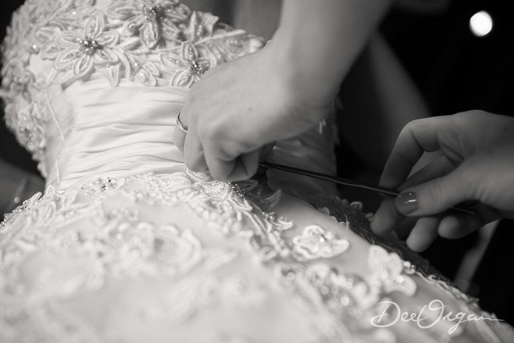 Dee Organ Photography-153-0083.jpg