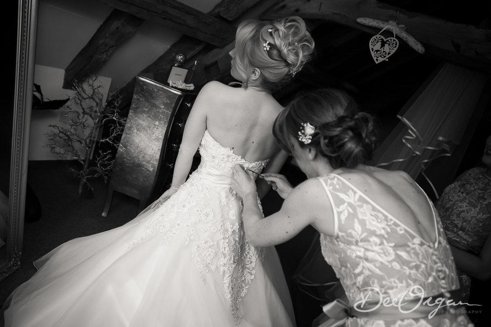 Dee Organ Photography-154-0088.jpg