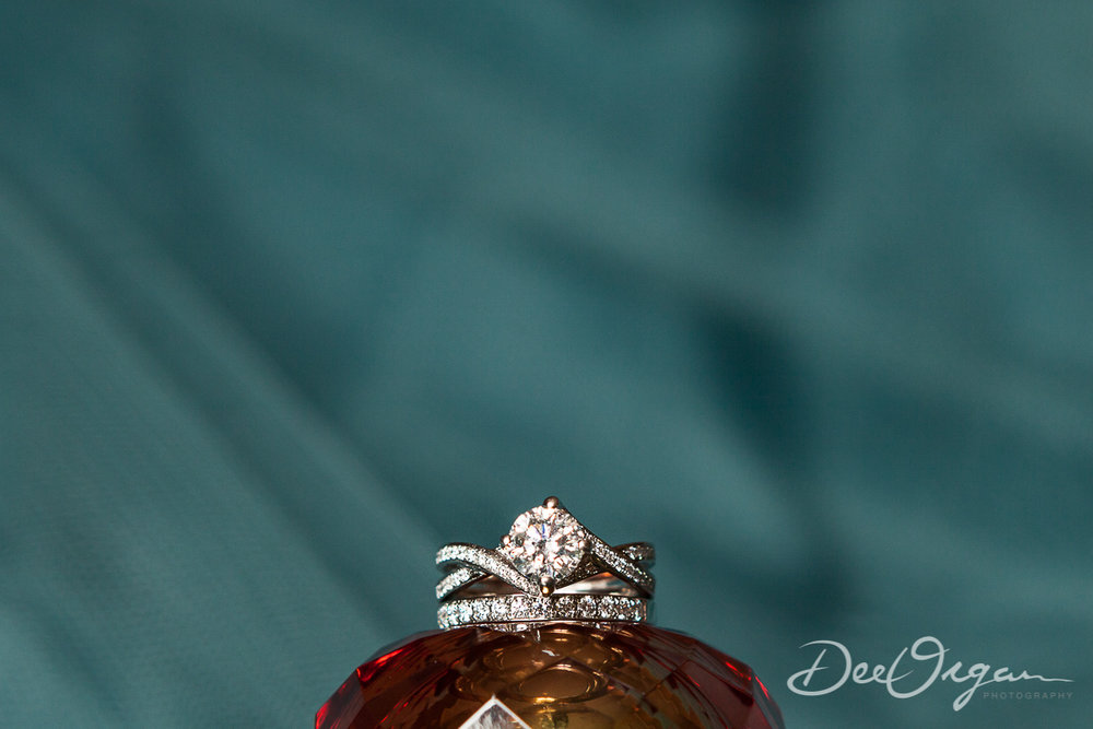 Dee Organ Photography-002-.jpg