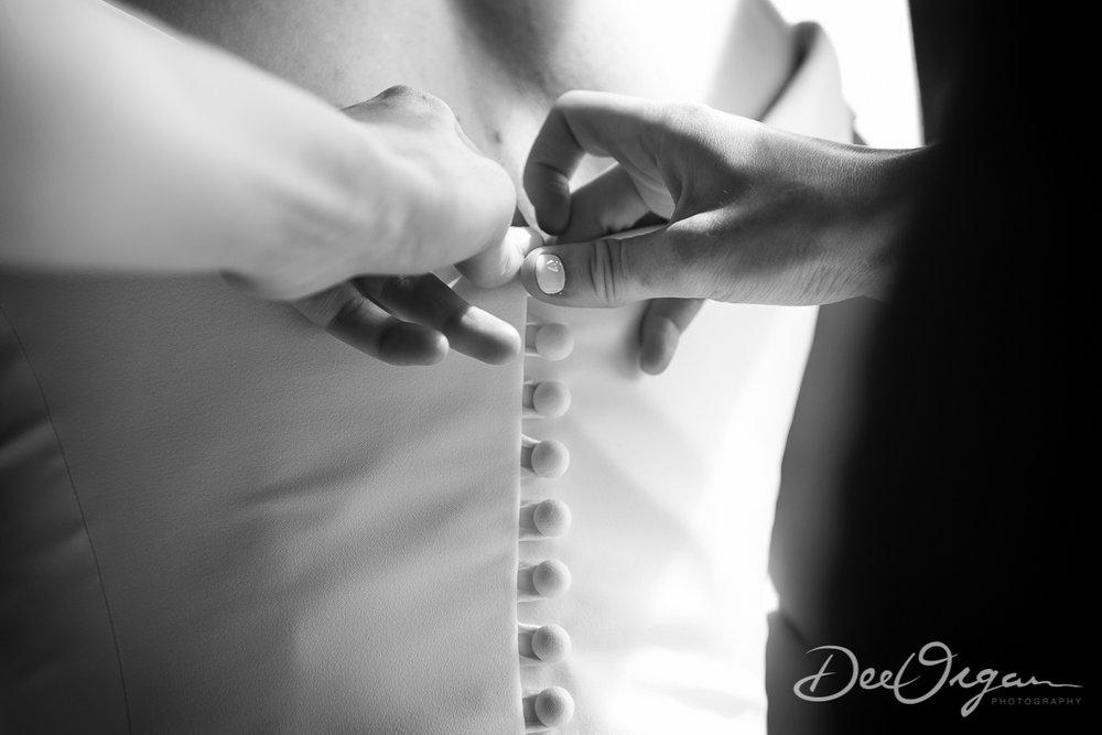 Dee Organ Photography-016-0574.jpg