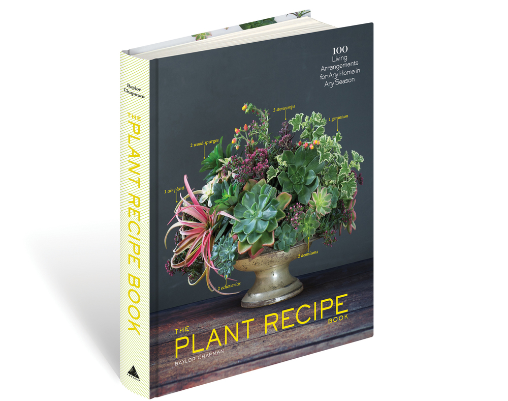 The-Plant-Recipe-Book-Baylor-Chapman.jpg