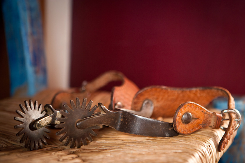 Horse_Photography-1.jpg