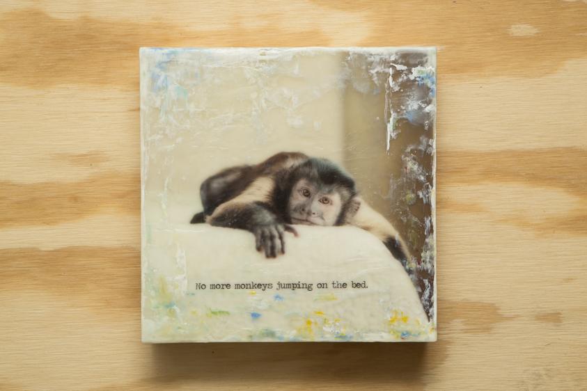 Monkey01.01125.20131212-1.jpg