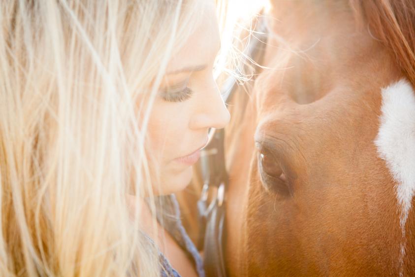 Horse Portraits-8.jpg