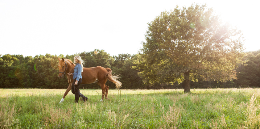 Horse Portraits-10.jpg