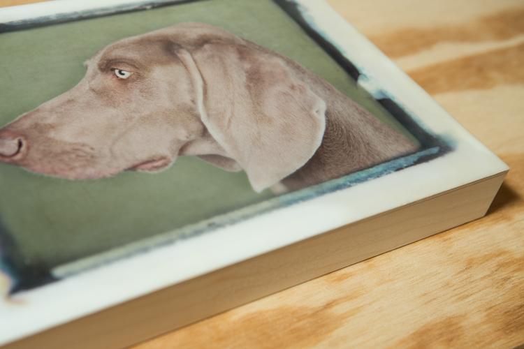 Dog#1-003-9x12-7.jpg
