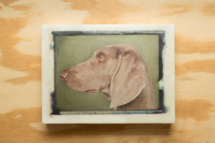 Dog#1-003-9x12-10.jpg