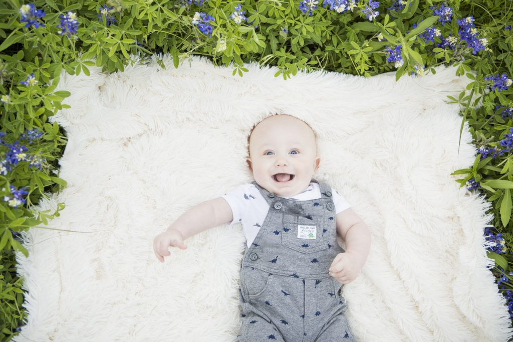 Austin Bluebonnet Family Photos