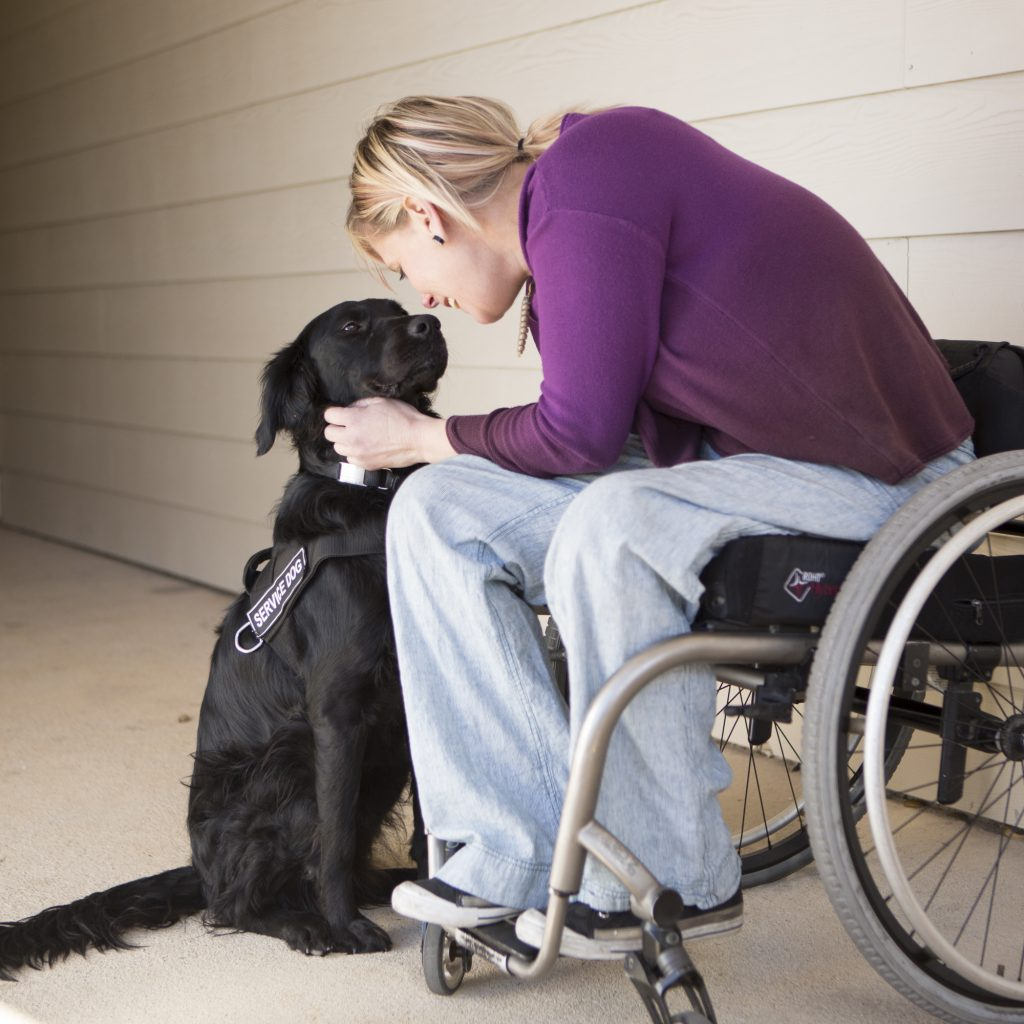 lady in a wheelchair with a service dog