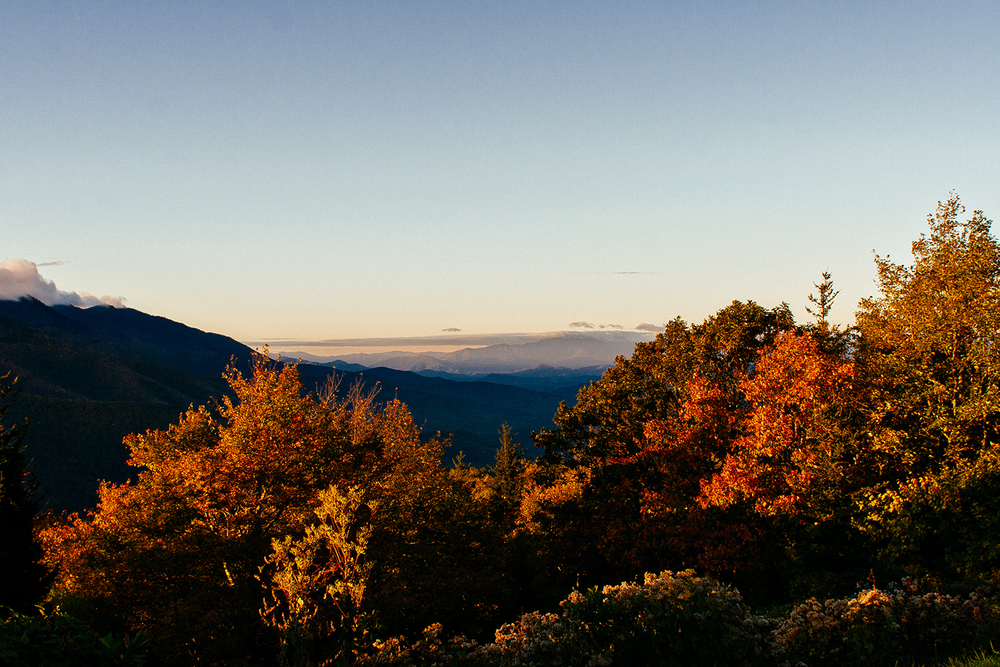 Mount Mitchell State Park Asheville North Carolina