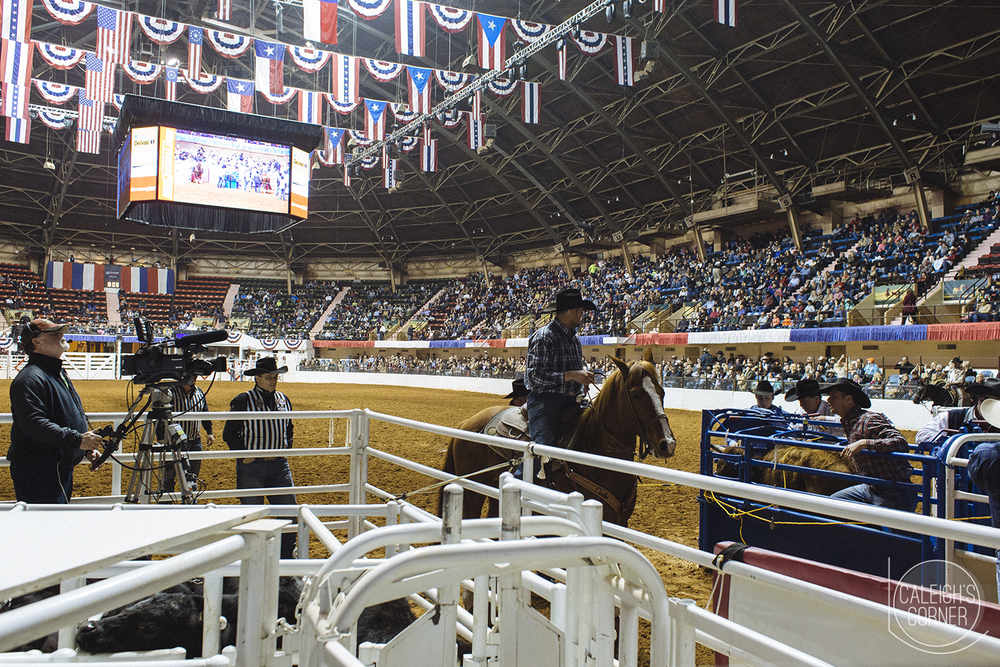 Fort Worth Stock Show & Rodeo via Caleigh's Corner